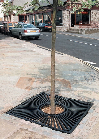 Sunshine tree grille tree protection